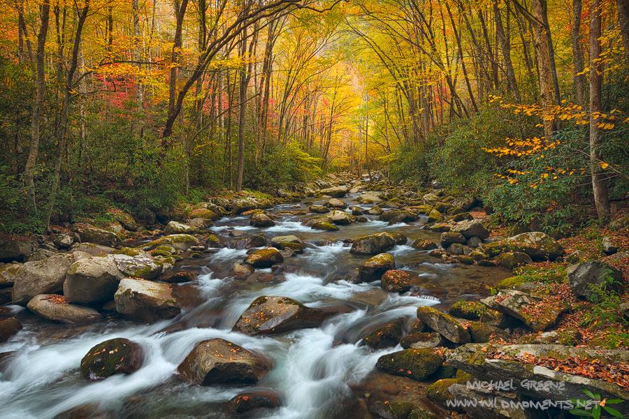 autumn, Great Smoky Mountains, Big Creek trail, Blue Ridge, Appalachian mountain, North Carolina, TN, NC, photo