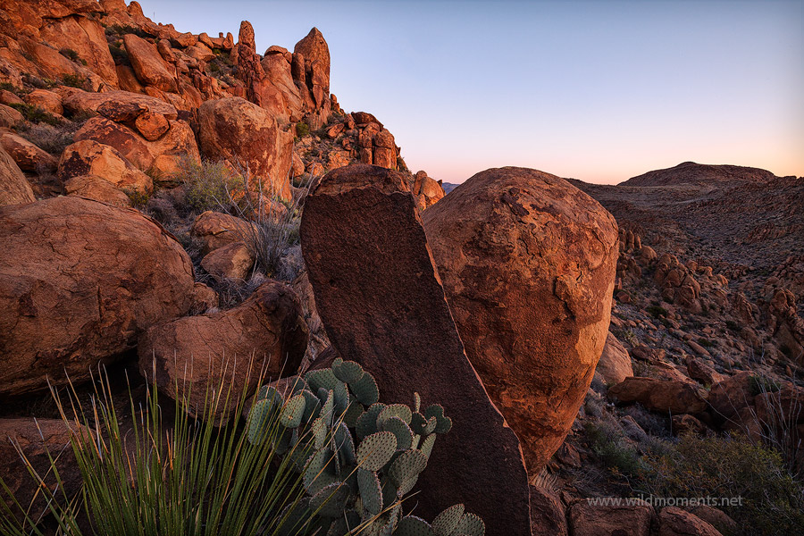 texas, tx, grapevine hills, big bend national park, rock, sunrise, photo