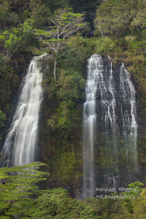 Opaeka'a Falls is located near the Wailua River State Park in central Kauai. Opeakaa Falls  is part of the north branch of the...