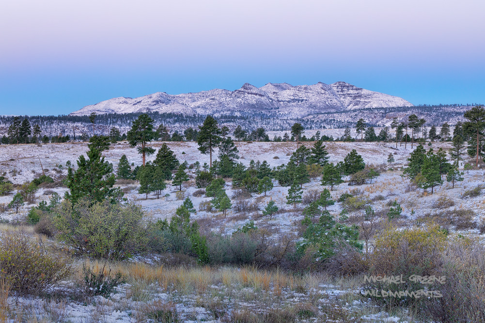 A sublimesnowy morning near the entrance to Bandalier National Monument after a spring snowstormin late April. Bandalier...