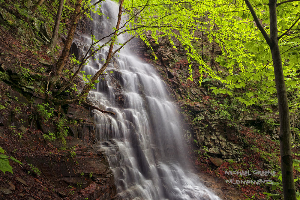 """A rare view into the heart of 80-foot Angel Falls after heavy spring rains . Angel Falls located in the """"endless mountains"""" is..."""