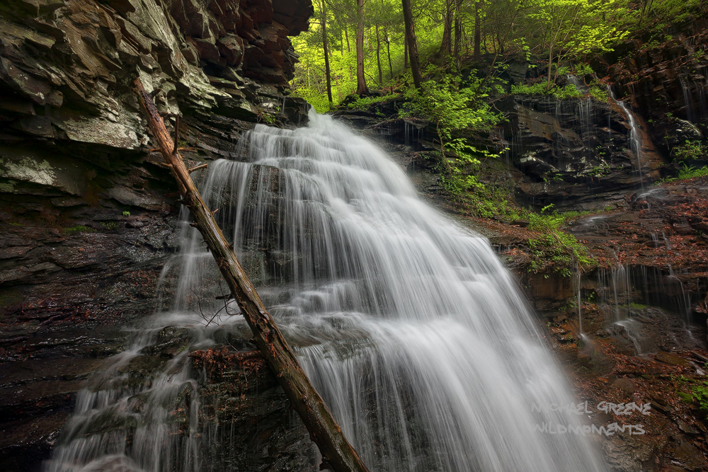 An unnamed waterfall rushes through a small gorge in PA's endless mountains.