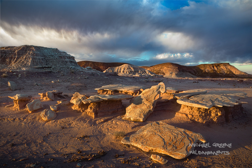 Amazing morning storm light showcases a small stand of mushroom rocks in the backcountry of the painted desert. I discovered...