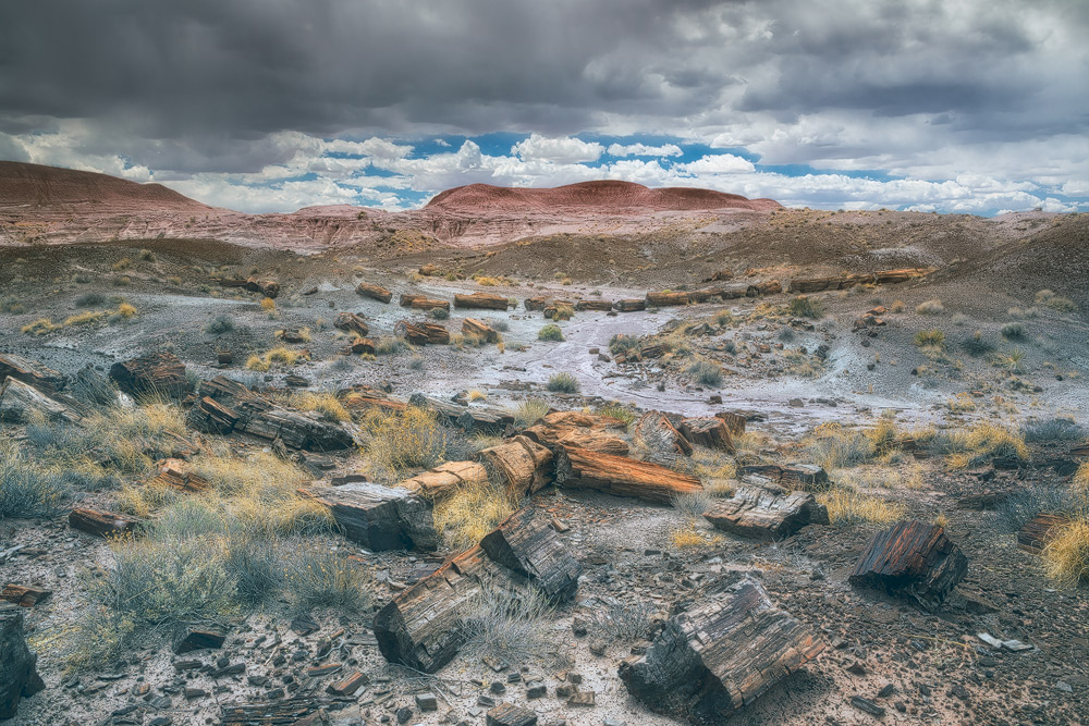 Storm clouds beckon over the black forest in the painted desert area of the Petrified Forest National Park. The park is near...