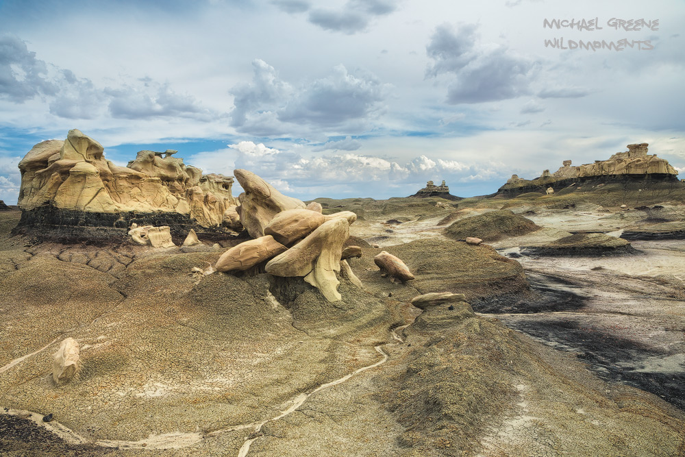 The Bisti Badlands are located in northern New Mexico near Shiprock and Farmington. These vast badlands are a photographer's...