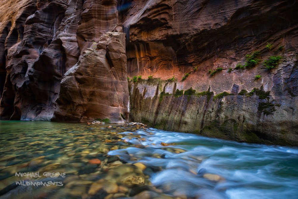 The Virgin River as seen from one of the deepest and darkest sections of the Narrows known as Wall Street. This area photographs...
