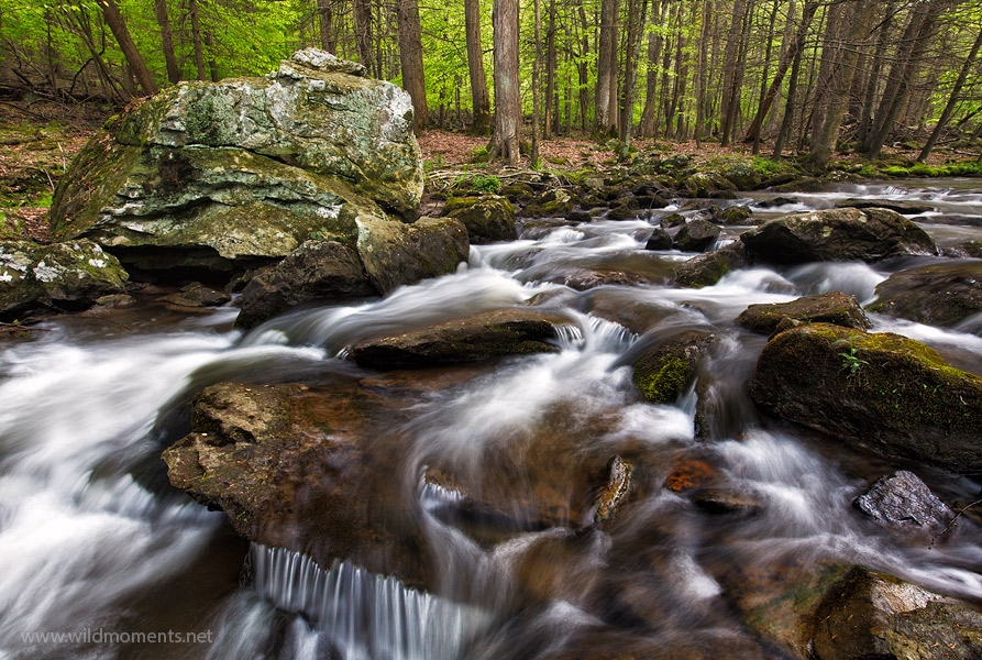 A particularly scenic stretch of Big Hunting Creek captured on an overcast spring afternoon with a wide angle lens.
