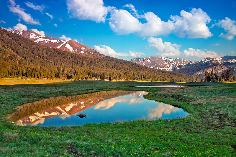 Early summer is a special time of year in the high countryat Yosemite National Park, CA.A captivating, magical&nbsp...
