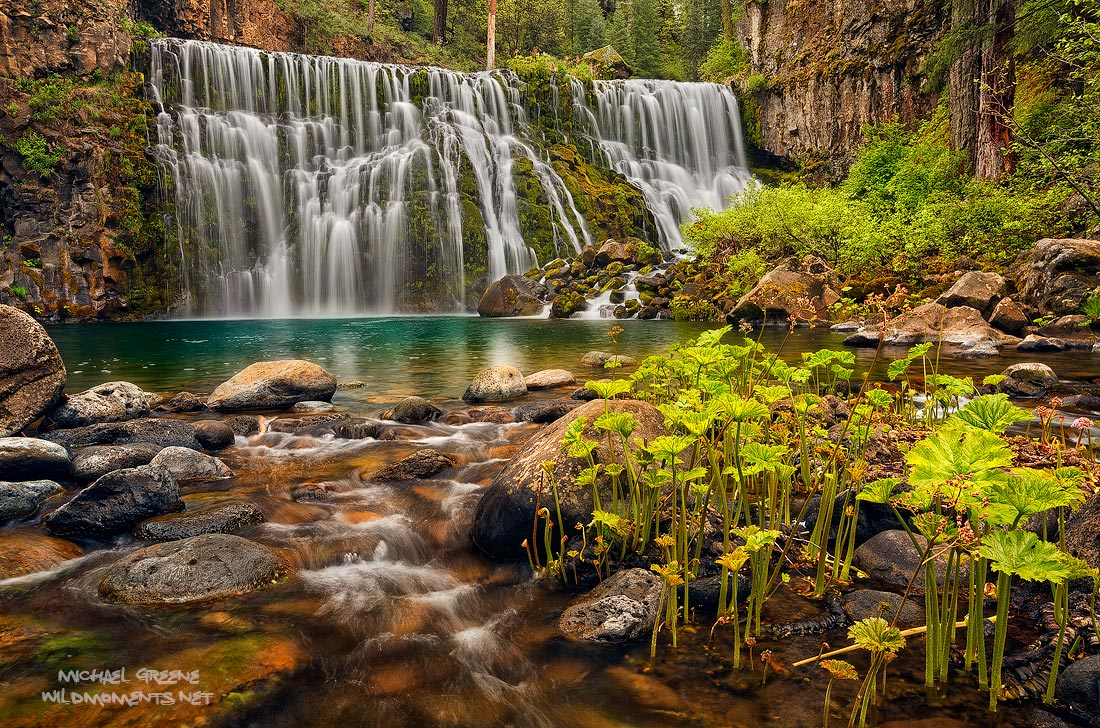 Middle McCloud Falls is certainly one of the most photogenic waterfalls in Northern California. This was captured during peak...