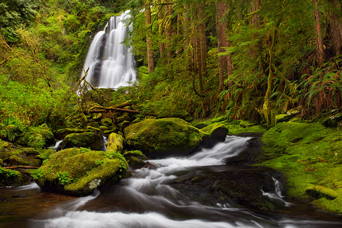 Buried deep in the Oregon Coast Range and located along the scenic North Fork Smith River in the Oregon Coast Range, Kentucky...