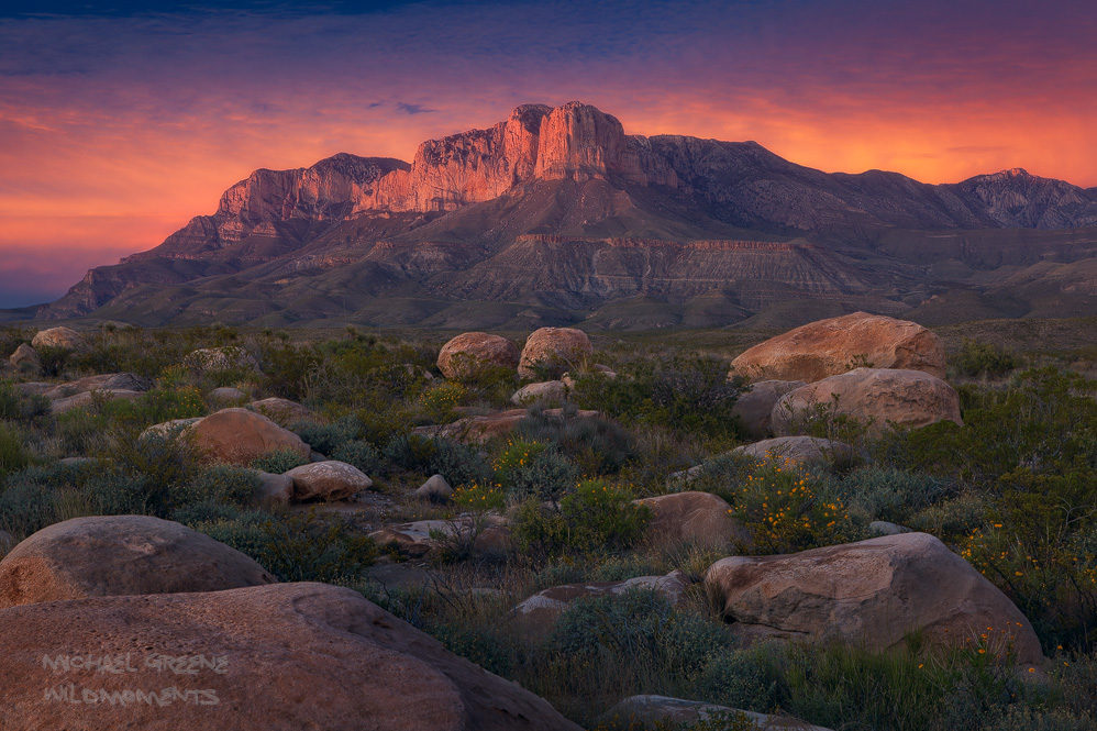 Flowering brittlebush and boulders frame the foreground during a colorful autumn sunset near Guadalupe Mountains National Park...