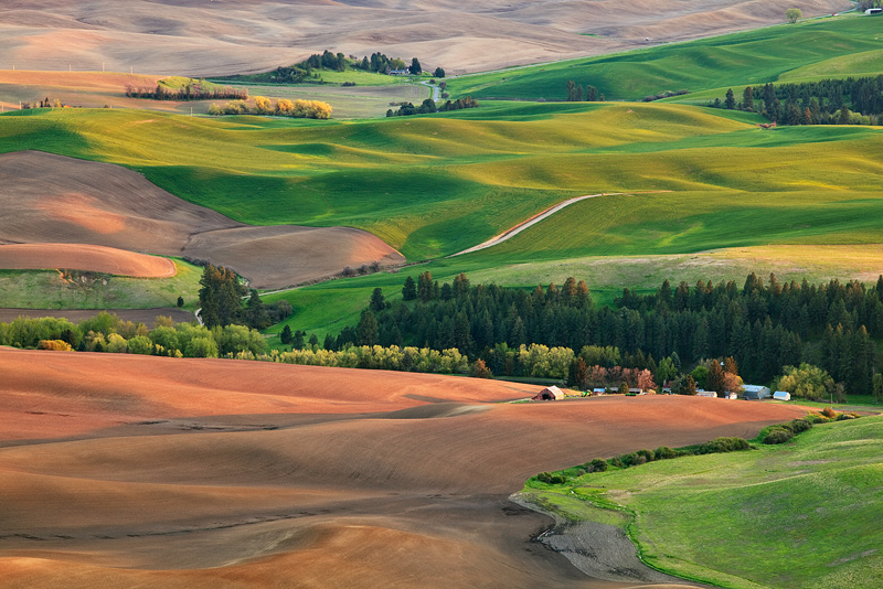 Texture and colors dapple the hillside during a brilliant sunset in the heart of the Palouse just outside of Pullman during the...