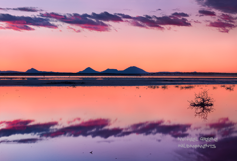 A dried lake bed became a sea of reflections during a surreal sunset just outside of Guadalupe Mountains National Park (West...