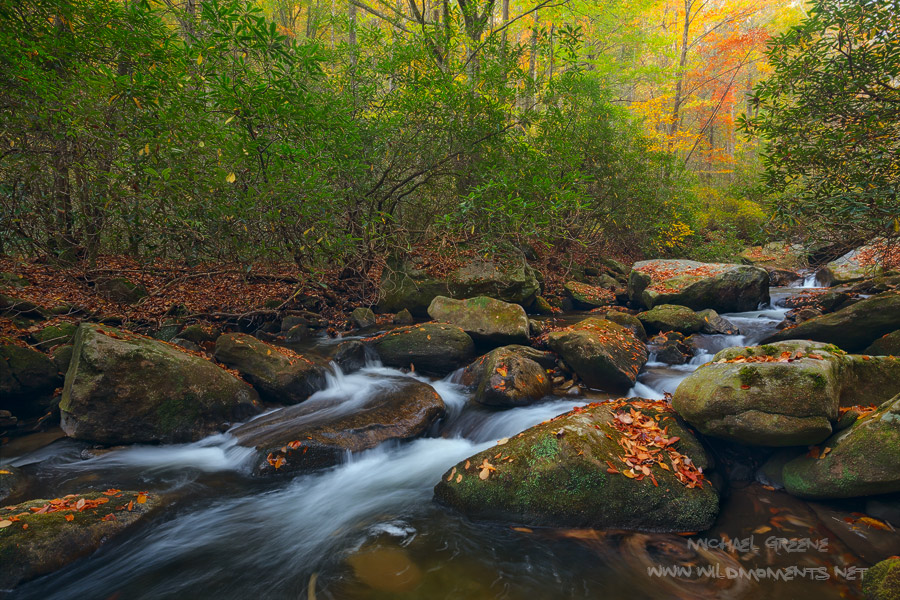 The Middle Saluda River is the states oldest designated national scenic river. This image was captured during peak autumn colors...