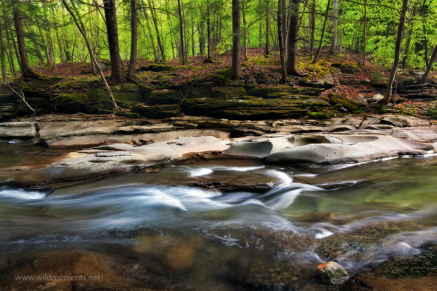 The slick rock gorge of Rock Run located in the McIntyre Wild Area is known for its clear flowing waters and decorated stream...