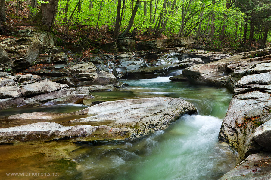 The water carved a near S pattern in the slick rock in this particular section of Rock Run, Pennsylvania's most beautiful stream...