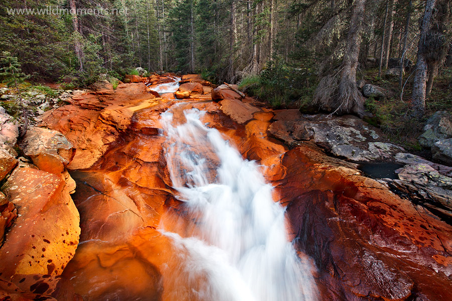 The one and only unmistakably original Rock Creek. The rocks are neon orange due to the iron content in the water.