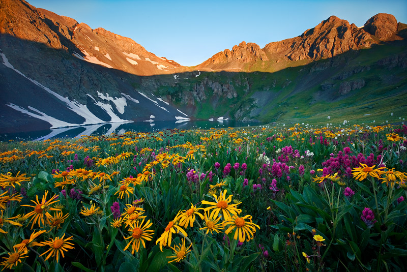 This picture is a scene taken at sunrise above Upper Clear Lake in early August during a banner wildflower year in Colorado.