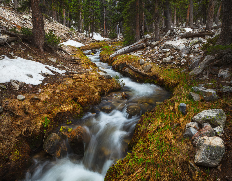The headwaters of BakerCreek gain momentum as spring greens arrive late in the season as the high country begins to thaw...