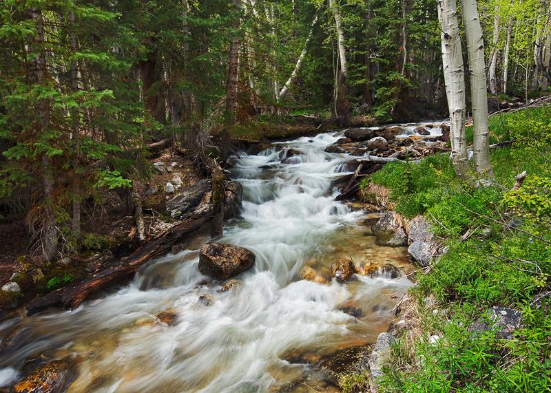 This is a picture of one of Nevada's most beautiful streams called Baker Creek, shown here on a partly cloudy afternoon in late...