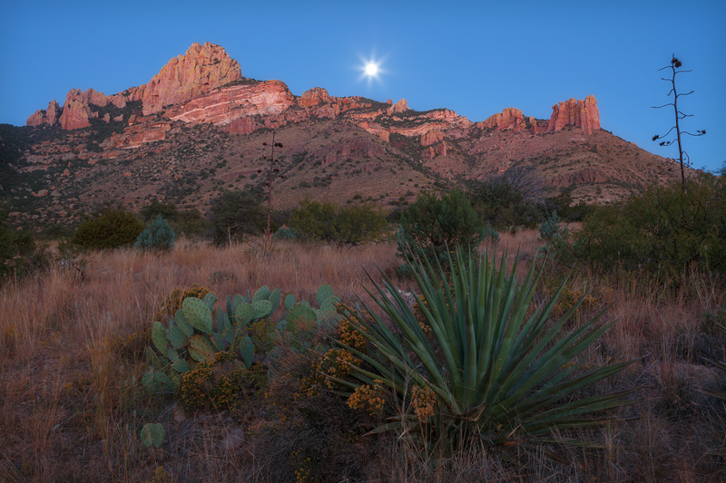 A full moon is captured setting during the ambient glowof earlydawnin the remote foothillsof the Chiracuhua...