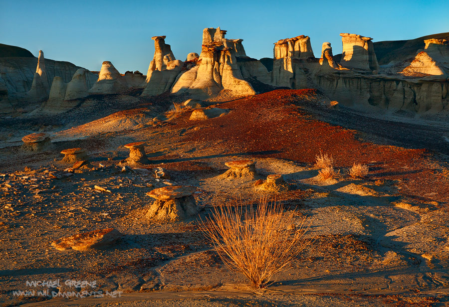 Dappled morning light decorates the mushrooms and hoodoos deep within the Bisti Wilderness.