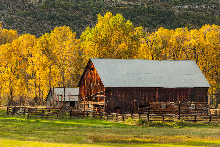 A rustic barn nestled peacefully amidst beautiful fall foliage is decorated by late afternoon storm light.