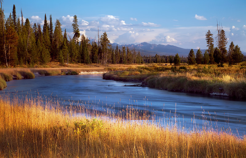 The glowing fields of Bechler Meadows are dissected by the crystal clear waters of the Bechler River with the Grand Tetons serving...