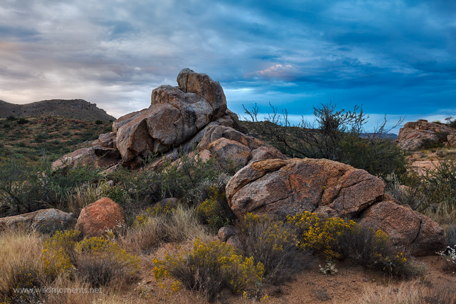 Cryptic storm clouds provided a dynamic background to photograph the stately rock formations and colorful desert scenery at Agua...