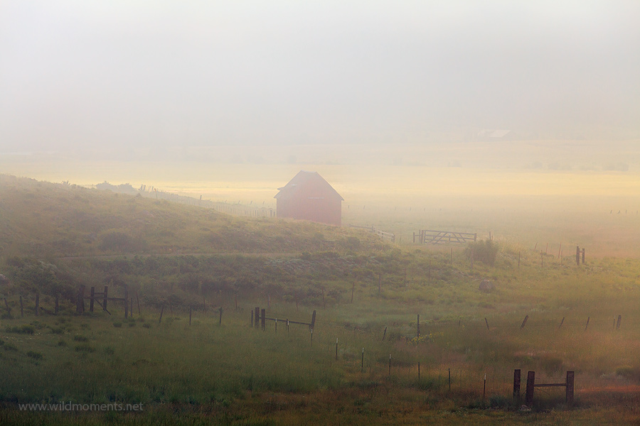 This barn and field image was captured during a quiet, foggy, summer Sunday morning outside of the rustic mountain town of Crede...