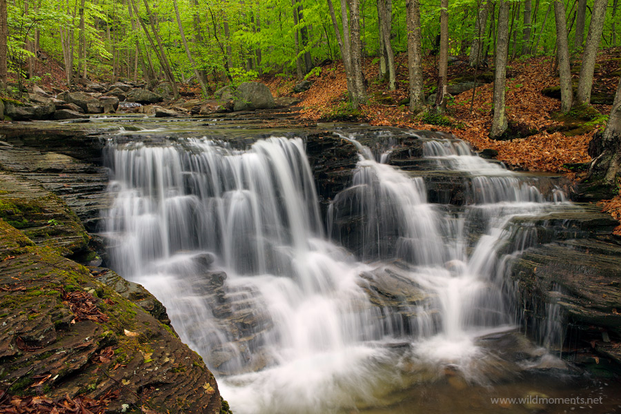 A view from the top of one of Pennsylvanias's most picturesque waterfalls captured near Rock Run.