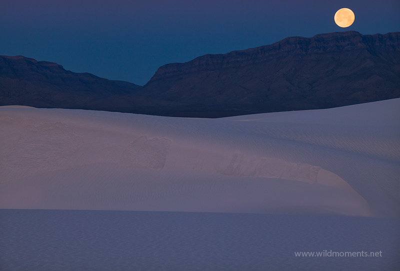 A full moon sets behind the San Andreas Mountains in Southern New Mexico at White Sands National Monument. This is not a composite...
