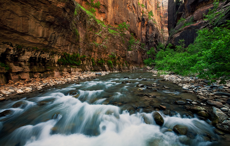 This image shows the intense rushing waters of the Virgin River accompanied by an explosion of color along its banks. I was drawn...