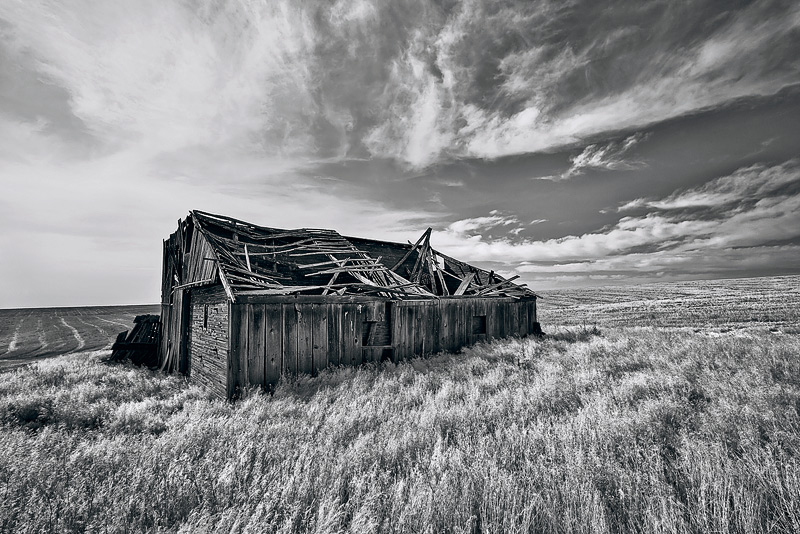 Aweathered landscape of wood and debris decorate an otherwise barren field of grain near the western border of the Palouse...