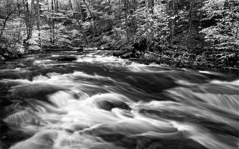 A black and white image of Kitchen Creek, the main watershed in Ricketts Glen State Park, Pennsylvania.Water levels were...