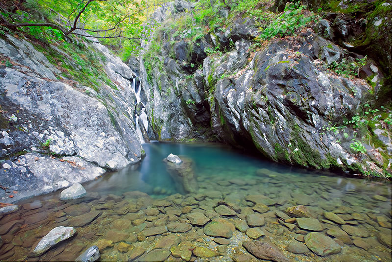 A serene collection of tranquility in White Oak Canyon where water, rocks, and forest rest in early evening light.