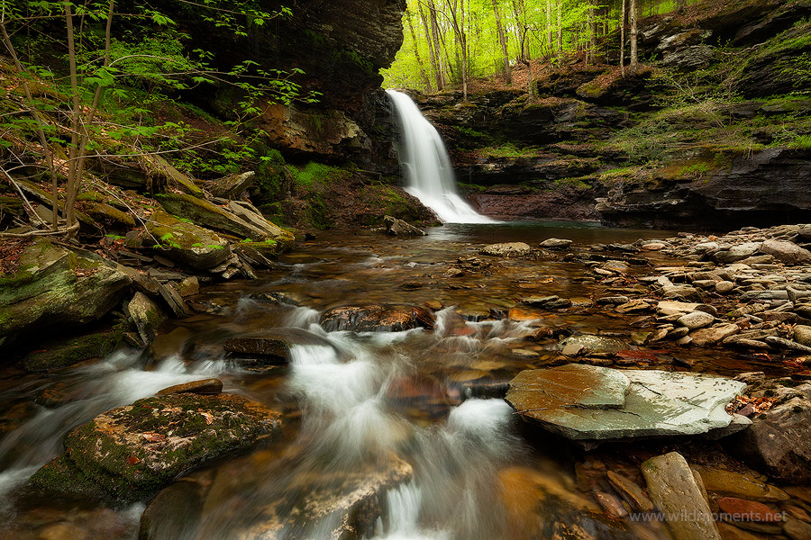 A major waterfall flows strongly during the spring in the Pennsylvania State Gamelands 13.