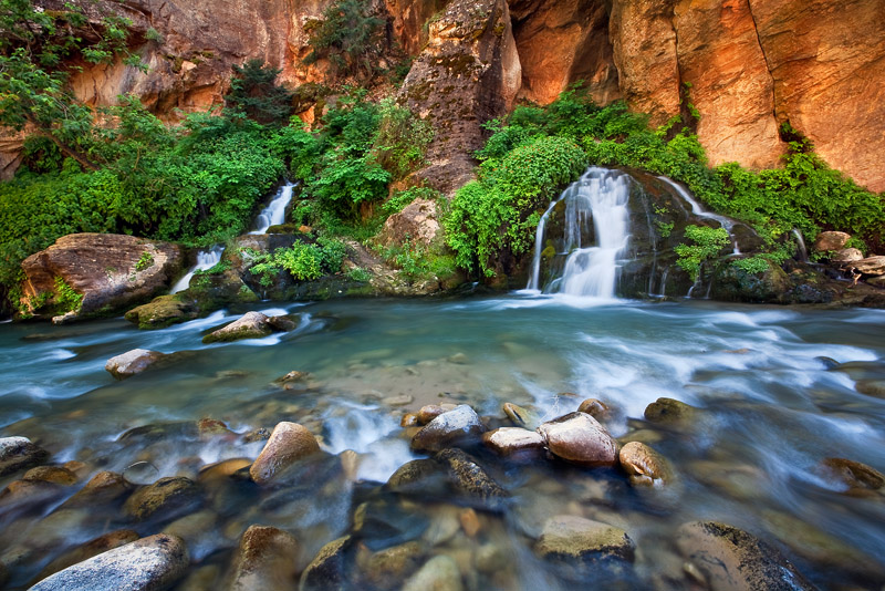 Lush, vibrant colors compliment the red rock lined slot of the Big Springs section of Zion's Virgin River backcountry. This photo...