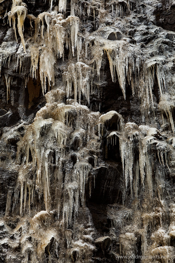 Cryptic looking icicles formations near Wolf Creek Pass in Southwestern Colorado.